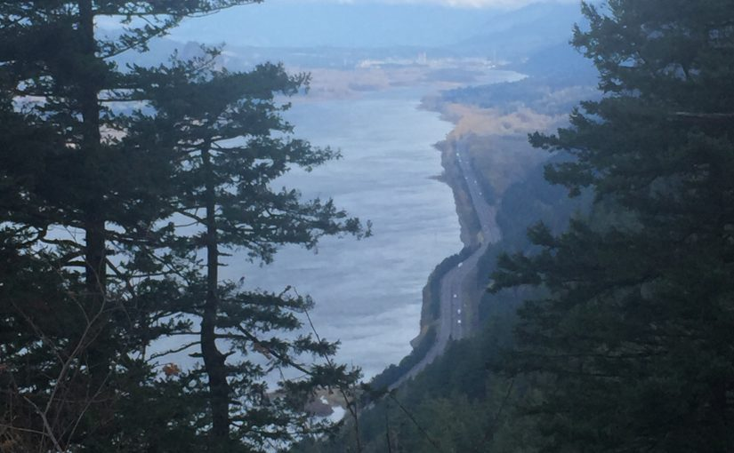 PCFFA, IFR Victorious in Challenge to 5th Failed Columbia River Salmon Plan